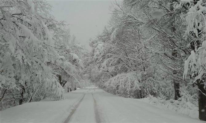 一个普通的不能在普通的小山村,冬天也是这般让人心醉 不比雪乡差吧?