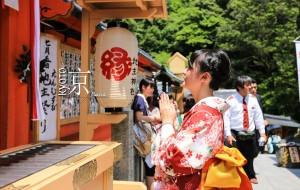 【奈良图片】「行走日本」京都、北海道-拥抱一场淡紫色的梦