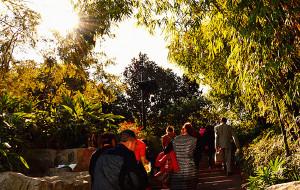 【龙泉图片】#花样游记大赛#放飞心情——徒步龙泉健身步道