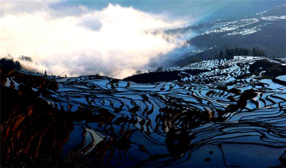 中国最美四大梯田图片