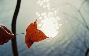 【千岛湖图片】冬季到千岛湖去放风