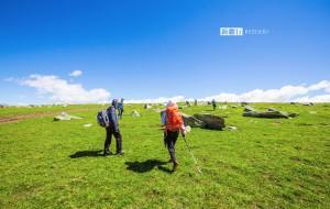 【禾木图片】这里星空沉醉,这里绿草如茵 | 喀纳斯徒步之旅