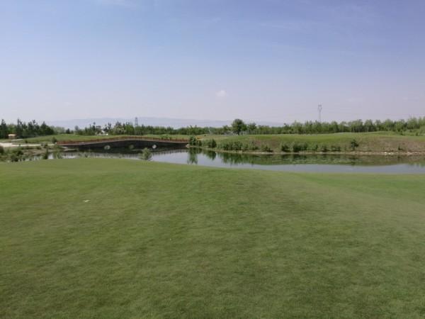 宁夏 游记   这不是高尔夫球场,是一片大草地,那草柔软得让人忍不住摸