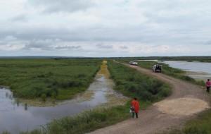 【双鸭山图片】五、北方边境万里行之--饶河湿地与万亩地块