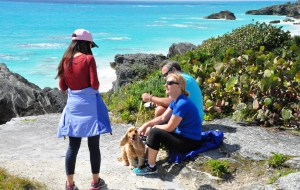 【百慕大图片】我看过的海之加勒比海之百慕大