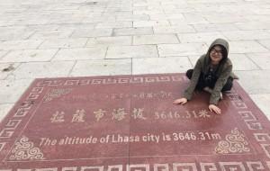 【浪卡子图片】「自由行走的萝莉」之越往西 越西藏 十五天的藏式生活有你 有我 有美景 还有回忆