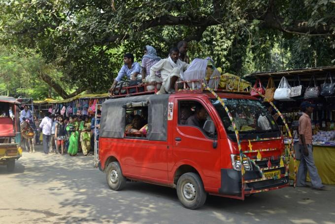 印度之--那兰陀,野生动物园