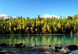 九月最美召集结伴同游【新疆的喀纳斯】——中国最美秋色