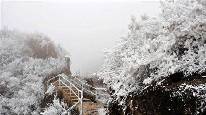 金子山原生态旅游风景区位于连山壮族瑶族自治县国营连山林场巾子村省