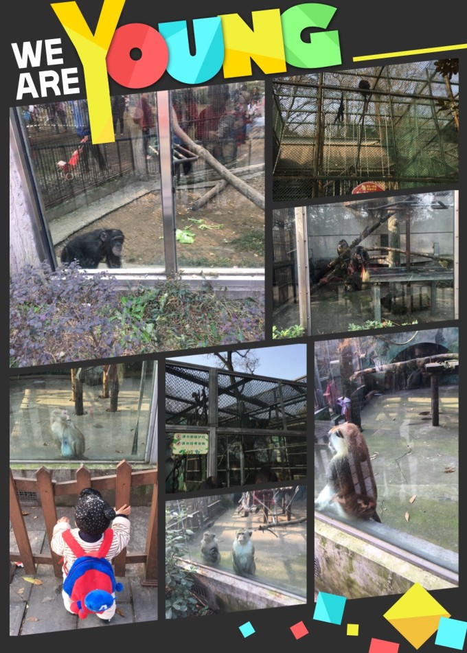 12.1-红山动物园仓促半日游,马鞍山自助游攻略
