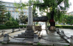 """【吉林图片】延边朝鲜族文化的摇篮""""龙井市"""""""