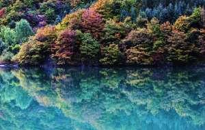 【黑水图片】2015重回彩林