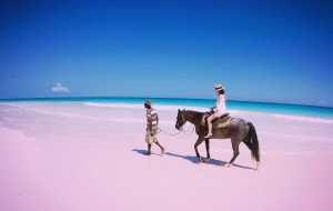 【巴哈马图片】四个女生的*巴哈马*疯狂拍照之旅(粉红沙滩+猪岛)