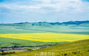 【河北图片】把心融化在辽阔的大草原上——呼伦贝尔