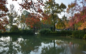 【平山图片】小雪后赴苏州天平山看秋日红叶
