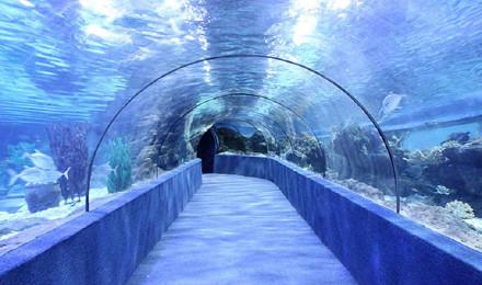苏州乐园海底世界景区门票