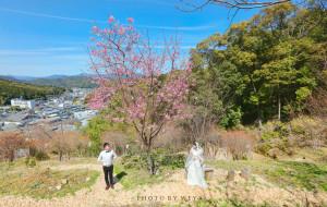 【四国图片】面面呱呱牵手环游世界--再见樱花,三遇霓虹,四国阳光耀白纱