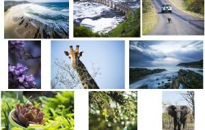 【开普敦图片】非洲之南,写给好望角的情书(攻略+游记,全文完)