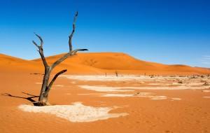 【纳米比亚图片】在纳米比亚,看一眼非洲