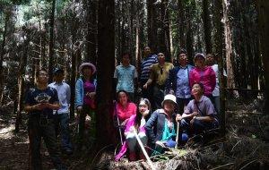 【达州图片】穿越四川省森林公园——东林山