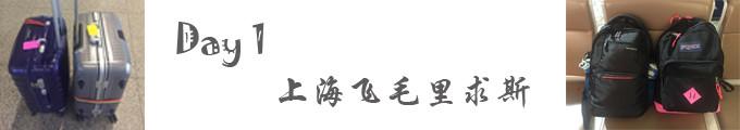 Day 1 :上海飞毛里求斯