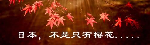日本,不是只有樱花......