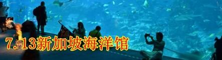 7.13新加坡圣淘沙-海洋馆等